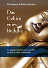 Hanson,  Rick;Mendius, Richard: Das Gehirn eines Buddha
