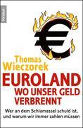eBook:  Euroland: Wo unser Geld verbrennt