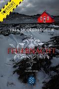 eBook: Feuernacht