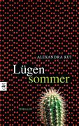 eBook: Lügensommer
