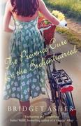 eBook: The Provence Cure for the Brokenhearted