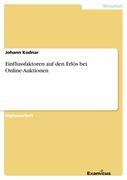 Kodnar, Johann: Einflussfaktoren auf den Erlös ...