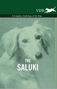 eBook: The Saluki - A Complete Anthology of the Dog