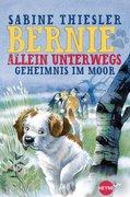 eBook: Bernie allein unterwegs - Geheimnis im Moor