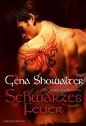 eBook: Schwarzes Feuer