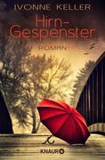 eBook: Hirngespenster