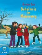 eBook: Geheimnis im Möwenweg