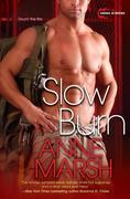 eBook: Slow Burn