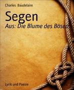 eBook: Segen