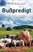 eBook: Bußpredigt