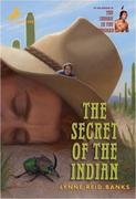 eBook: The Secret of the Indian