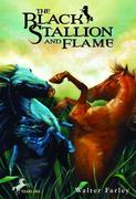 eBook: The Black Stallion and Flame