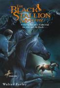eBook: The Black Stallion Mystery