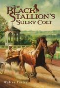 eBook: The Black Stallion's Sulky Colt