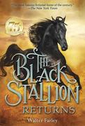 eBook: The Black Stallion Returns
