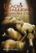 eBook: The Black Stallion's Blood Bay Colt