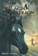 eBook: Son of the Black Stallion