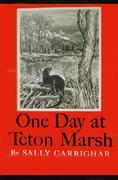 eBook: One Day At Teton Marsh