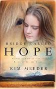 eBook: Bridge Called Hope