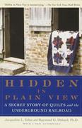 eBook: Hidden in Plain View