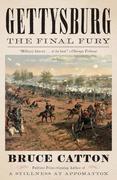 eBook:  Gettysburg: The Final Fury
