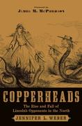 eBook: Copperheads: The Rise and Fall of Lincoln´s Opponents in the North