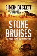 eBook: Stone Bruises