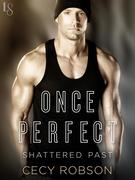eBook: Once Perfect