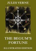 eBook: The Begum's Fortune