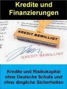 Sigmund Schmid: Kredite und Finanzierungen