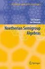 Jespers, Eric;Okninski,  Jan: Noetherian Semigroup Algebras