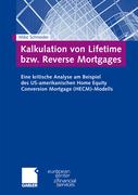 Schneider, Mike: Kalkulation von Lifetime bzw. ...