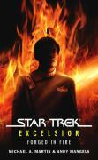 eBook:  Star Trek: Excelsior: Forged in Fire